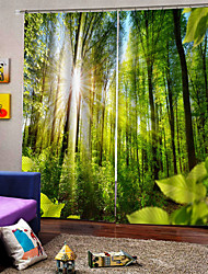cheap -Wholesale Custom 3D UV Printing Stock Lots Window Curtains Drapes Made in China 100% Polyester Blackout Fabric for Bedroom /Living Room/ Hotel /Balcony