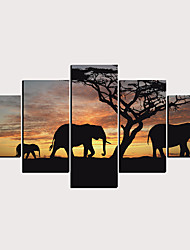 cheap -Print Rolled Canvas Prints - Animals Natures & Outdoors Classic Modern Five Panels Art Prints