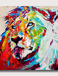 cheap -Oil Painting Hand Painted Square Animals Pop Art Modern Rolled Canvas (No Frame)
