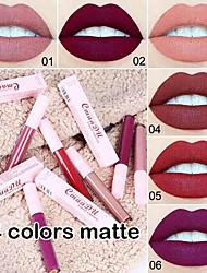 abordables -rouge à lèvres sexy mat brillant à lèvres durable cosmétique lèvres imperméable mat durable
