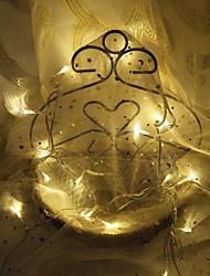 cheap -3m String Lights 20 LEDs Dip Led 1pc Warm White Decorative 220 V
