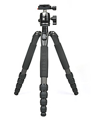 Недорогие -LITBest T-025SK+B-00K Назначение 137 cm На открытом воздухе Трипод Записывающая камера