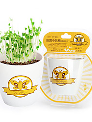 cheap -Cute DIY Plastic Original Style Mini Watering Planting Straw Cup Pot Plant