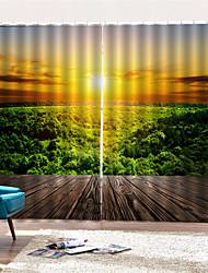 Недорогие -3d печать конфиденциальности две панели полиэфирные шторы для столовой / гостиной декоративные пылезащитные водонепроницаемые высококачественные шторы