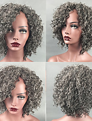 cheap -Synthetic Wig Afro Curly Kinky Curly Short Bob Side Part Wig Short Grey Synthetic Hair 14 inch Women's Adjustable Heat Resistant Classic Silver Dark Gray