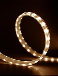 abordables -yeelight ac220-240v, pilote de lumière de bande led intelligente de 5 m, fonctionne avec alexa apple homekit (produit de l'écosystème xiaomi) - bande de lumière led de 5 m définie
