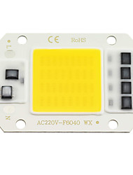 cheap -ZDM 1PC LED COB Chip 20W 30W 50W AC220V Warm White/Cold White Light Engine Integrated Smart IC Driver
