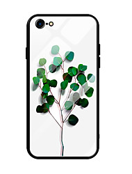 cheap -Case For Apple iPhone 6s Plus / iPhone 6 Plus Ultra-thin / Pattern Back Cover Scenery / Tree Tempered Glass