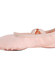 cheap -Women's Dance Shoes Canvas Ballet Shoes Flat Flat Heel Customizable Pink / Performance / Practice