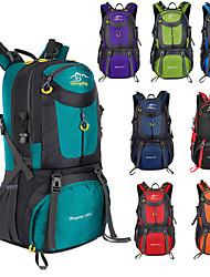 Недорогие -60 L Рюкзаки Заплечный рюкзак Дышащие ремни - Легкость Дышащий Дожденепроницаемый Износостойкость На открытом воздухе Охота Пешеходный туризм Восхождение Нейлон Черный Небесно-голубой Лиловый / Да