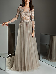 cheap -A-Line Illusion Neck Sweep / Brush Train Lace / Tulle Elegant / Grey Wedding Guest / Formal Evening Dress with Pleats / Appliques 2020