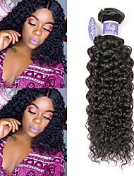 cheap -3 Bundles Malaysian Hair Kinky Curly Remy Human Hair 100% Remy Hair Weave Bundles Natural Color Hair Weaves / Hair Bulk Extension Bundle Hair 8-28 inch Natural Color Human Hair Weaves Newborn Gift