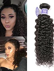 cheap -3 Bundles Mongolian Hair kinky Straight Virgin Human Hair Unprocessed Human Hair Natural Color Hair Weaves / Hair Bulk Extension Bundle Hair 8-28 inch Natural Human Hair Weaves Cosplay New Design