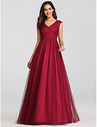 cheap -A-Line V Neck Floor Length Lace / Tulle Elegant / Vintage Inspired Prom Dress with Criss Cross 2020