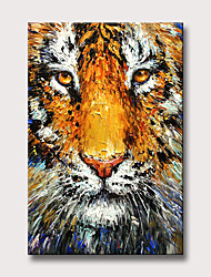 cheap -Oil Painting Hand Painted Abstract Animals Modern Rolled Canvas Rolled Without Frame