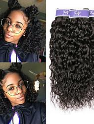 cheap -3 Bundles Burmese Hair Water Wave Unprocessed Human Hair 100% Remy Hair Weave Bundles Natural Color Hair Weaves / Hair Bulk Extension Bundle Hair 8-28 inch Natural Human Hair Weaves Sexy Lady Best