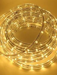 Недорогие -5 метров Гибкие светодиодные ленты 180 светодиоды ДИП светодиоды 1 комплект Тёплый белый / Белый / Красный Для вечеринок / Праздник / Самоклеющиеся 110 V