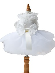 cheap -Dogs Dress Dog Clothes White Costume Polyster Solid Colored Wedding XXS XS S M L XL