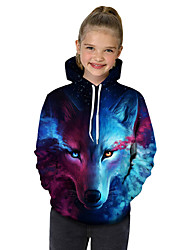 cheap -Kids Toddler Girls' Active Basic Wolf Geometric Print Color Block Print Long Sleeve Hoodie & Sweatshirt Blue / Animal