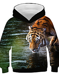 cheap -Kids Boys' Active Street chic Tiger Print 3D Animal Print Long Sleeve Hoodie & Sweatshirt Rainbow