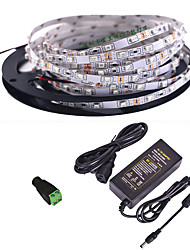 cheap -5m LED Strip Lights Flexible Tiktok Lights 600 LEDs SMD2835 1 X 12V 5A Power Supply 1 set Warm White White Red Creative Party Decorative 85-265 V Self-adhesive