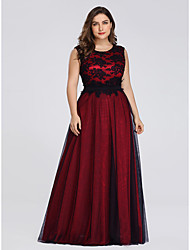 cheap -A-Line Plus Size Formal Evening Dress Jewel Neck Sleeveless Floor Length Lace Tulle with Lace Insert 2020