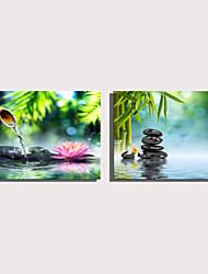 Недорогие -С картинкой Роликовые холсты Отпечатки на холсте - Натюрморт ботанический Modern Репродукции
