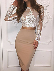 cheap -Sheath / Column Color Block Holiday Cocktail Party Dress Jewel Neck Long Sleeve Knee Length Lace Polyester with Lace Insert 2020