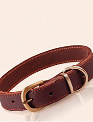 cheap -Dog Collar Genuine Leather Orange