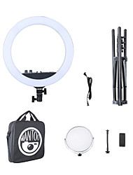 cheap -12inch  Mantoo 12 LED Ring Light Adjustable Color Temperature 3200-5600K Warm to Cold Color with Stand Stand Phone Holder Makeup YouTube Tik Tok Vlog and Vine Self-Portrait