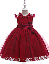 cheap -Kids Toddler Girls' Active Cute Floral Jacquard Solid Colored Lace Bow Embroidered Sleeveless Knee-length Dress Wine / Layered / Pleated / Mesh / Tassel