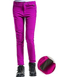 cheap -Women's Hiking Pants Softshell Pants Winter Outdoor Thermal / Warm Waterproof Windproof Fleece Lining Fleece Pants / Trousers Bottoms Skiing Camping / Hiking Snowsports Black Sky Blue Purple S M L XL