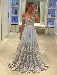 cheap -A-Line Off Shoulder Court Train Tulle Cute / Elegant Prom Dress 2020 with Appliques / Bow(s)