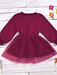 cheap -Baby Girls' Basic Solid Colored Long Sleeve Dress Fuchsia