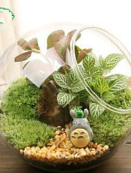 abordables -plante terrarium affichage verre dessus de table succulente plante à air planteur globe microlandschaft maison