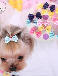 cheap -Colorful Little Hairpin Teddy Pet Dog Pet Accessories Pet Headdress