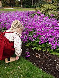 preiswerte -Baby Mädchen Freizeit / Aktiv Blumen / Solide Gefaltet / mit Schnürung / Druck Langarm Lang Kleidungs Set Rote