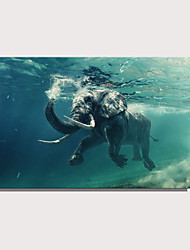 cheap -Print Rolled Canvas Prints Stretched Canvas Prints - Animals Nautical Modern Art Prints