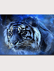 cheap -Print Rolled Canvas Prints Stretched Canvas Prints - Animals Celestial Modern Art Prints