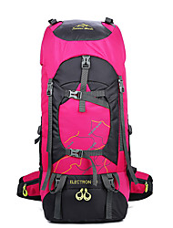 cheap -60 L Hiking Backpack Rucksack Rain Waterproof Wear Resistance High Capacity Outdoor Camping / Hiking Camping Military / Tactical Oxford Black Purple Red