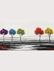 Rolled Canvas Paintings