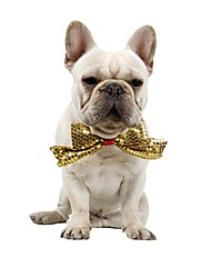 cheap -Dog Cat Collar Ornaments Sequin Bowknot Casual / Daily Fashion Dog Clothes Yellow Costume Acrylic Fibers S
