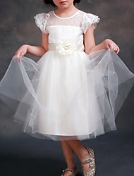 cheap -A-Line Tea Length First Communion Flower Girl Dresses - Tulle Short Sleeve Jewel Neck with Sash / Ribbon / Appliques