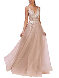 cheap -A-Line Open Back Prom Formal Evening Dress Plunging Neck Sleeveless Floor Length Lace Tulle with Pleats Lace Insert 2020