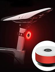 Недорогие -Светодиодная лампа Велосипедные фары Задняя подсветка на велосипед Велоспорт Велоспорт Портативные Прочный Легкость Литий-ионная аккумуляторная батарея 10 lm Аккумуляторный Красный Велосипедный спорт