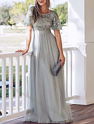 cheap -A-Line Empire Grey Party Wear Prom Dress Jewel Neck Short Sleeve Floor Length Tulle with Appliques 2020