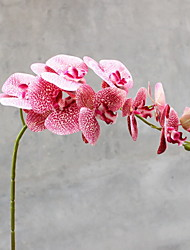 cheap -Artificial Flowers 1 Branch Classic Modern Contemporary Phalaenopsis