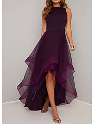cheap -A-Line Elegant Prom Dress Jewel Neck Sleeveless Asymmetrical Tulle Polyester with Pleats 2020