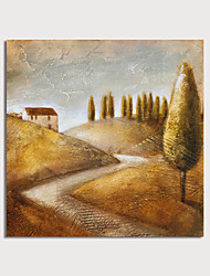 cheap -Oil Painting Hand Painted Square Landscape Modern Rolled Canvas (No Frame)