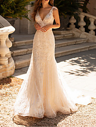 cheap -A-Line Wedding Dresses V Neck Court Train Polyester Sleeveless Formal Boho Plus Size with Lace Insert Appliques 2020